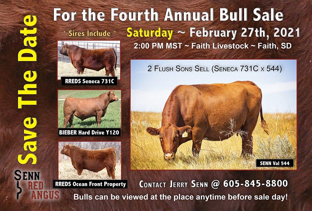 Bull Sale February 27th